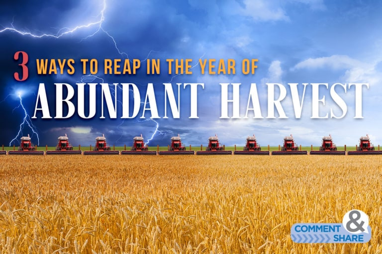 3 Ways to Reap in the Year of Abundant Harvest